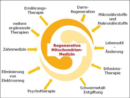 kraft u allraun osteopathie würzburg